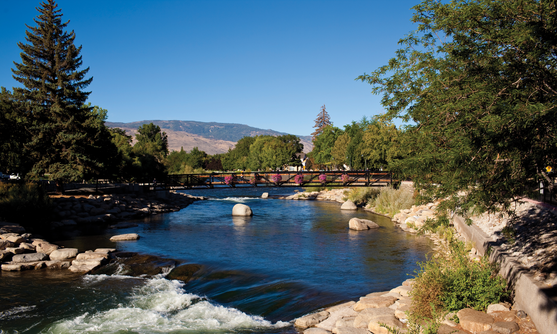 Reno Area