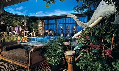 Safari Adventure Suite