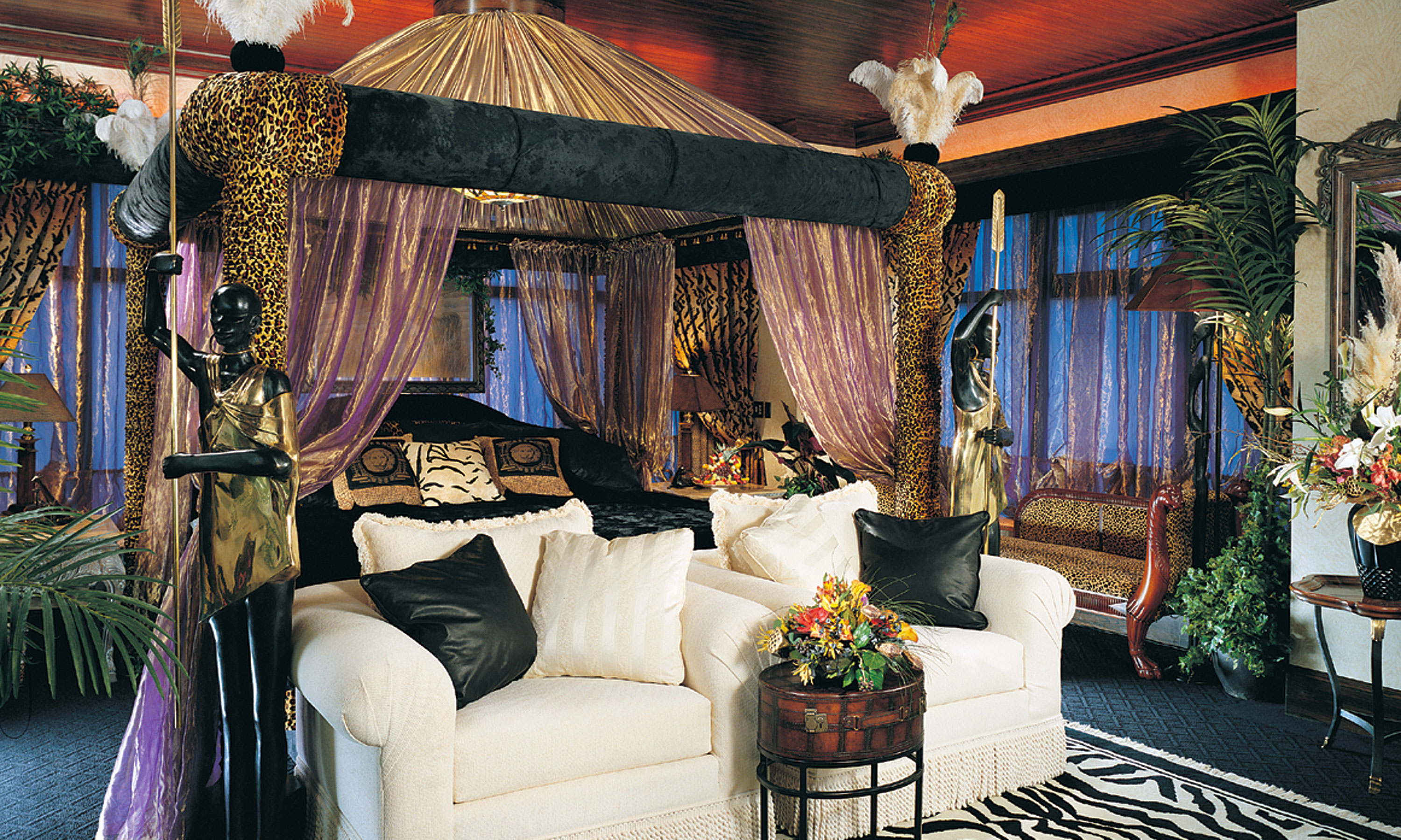 Safari Living Room Pictures